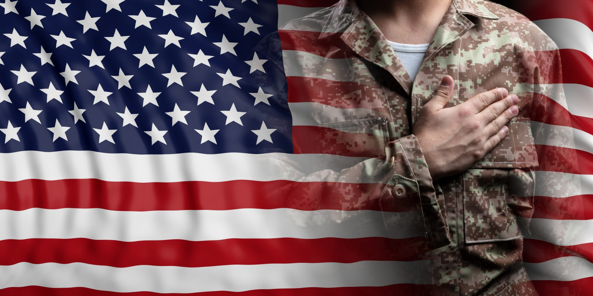 United States Flag and Solider