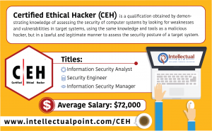 Certified Ethical Hackers Infographic